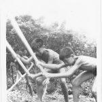 七十年代的東灣學校生活簡樸,耕種也是一種娛樂。